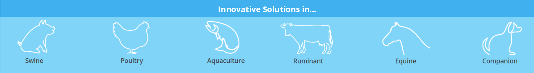 Animal Health Innovation, Innovative Solutions in...